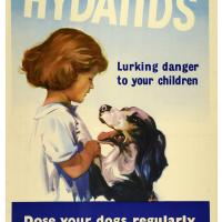 Newzealand Hydatid poster.jpg